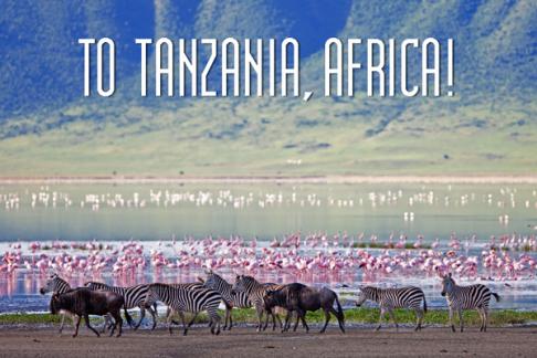 to-tanzania-2
